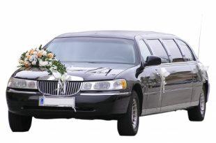 Streched Limousine 310x205 - Die Kutsche zur Hochzeit oder lieber etwas mit Motor?