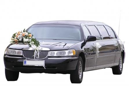 Streched Limousine - Die Kutsche zur Hochzeit oder lieber etwas mit Motor?
