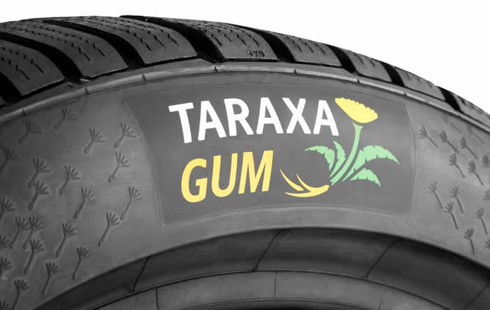 Entwicklung: Erste Reifen aus Löwenzahn-Naturkautschuk